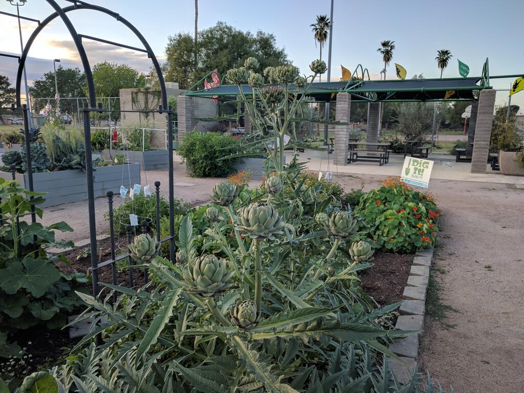 Clark Park Community Garden (CPCG) Fundraiser